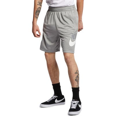Nike Sb Sunday Active Shorts, Grey