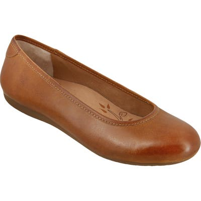 Taos Rascal Flat, Brown