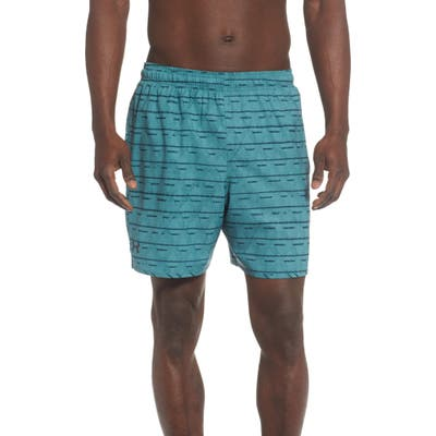 Under Armour Dockside Volley Swim Trunks, Blue