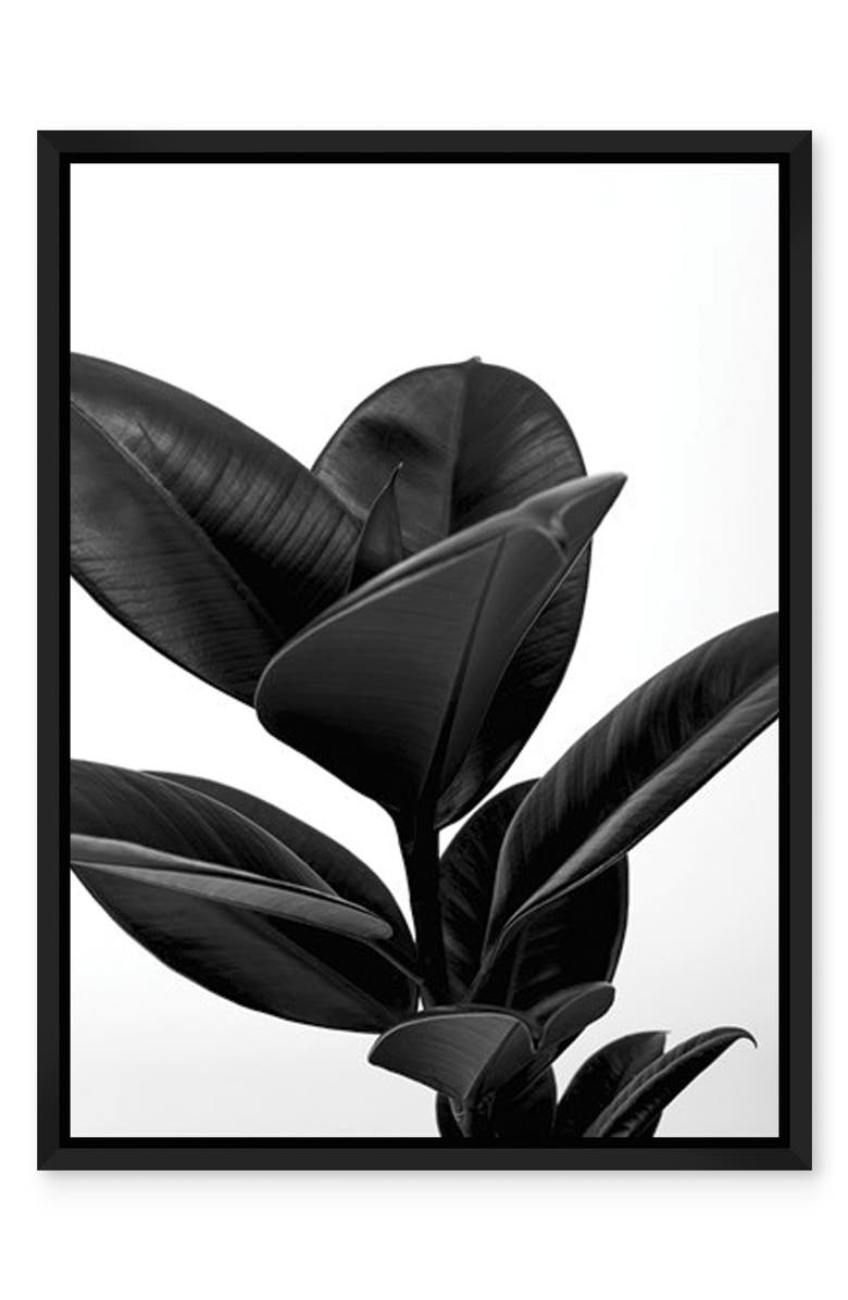 NEW ERA STUDIOS House Plant Suri Noir Framed Wall Art, Main, color, MULTI