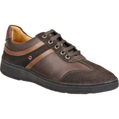 Sandro Moscoloni Toby Sneaker, Brown