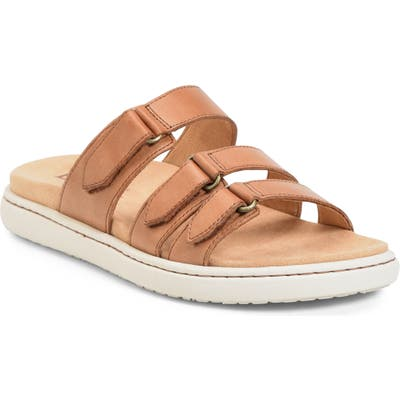 B?rn Daintree Slide Sandal, Brown