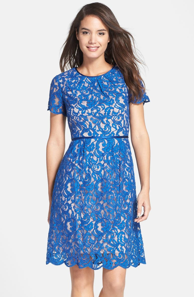 ADRIANNA PAPELL Scalloped Lace Dress, Main, color, 400