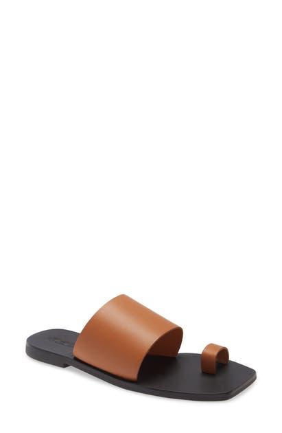 Sol Sana Toe Loop Slide Sandal In Brown