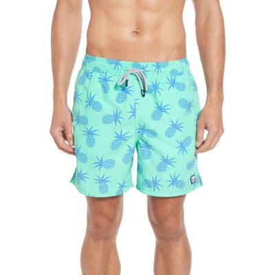 Tom & Teddy Pineapple Print Swim Trunks