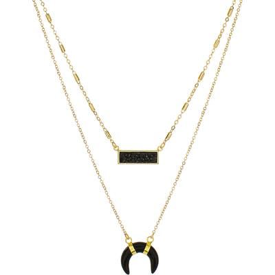 Panacea Black Drusy Bar & Horn Layered Necklace