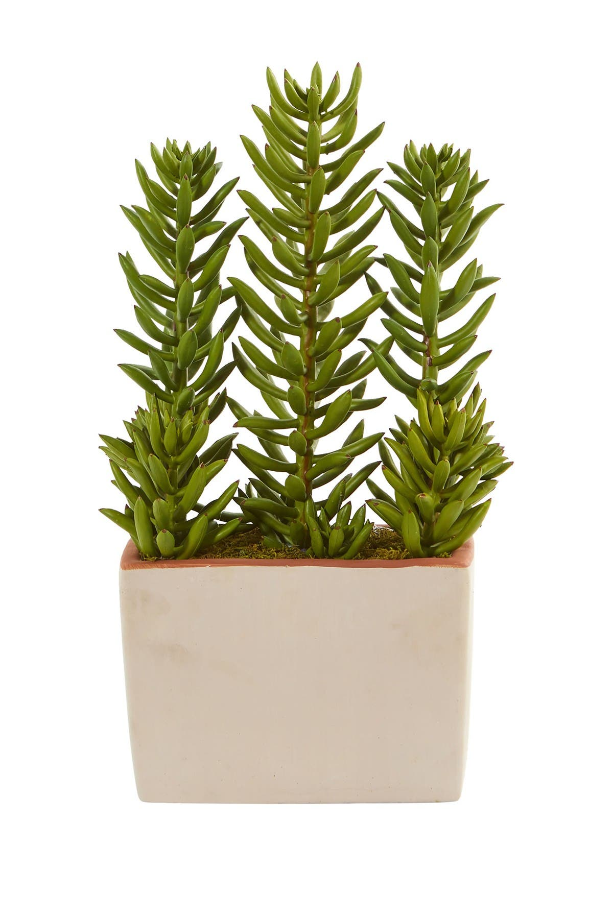 """Image of NEARLY NATURAL 17"""" Succulent Artificial Plant with Decorative Planter"""