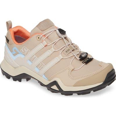 Adidas Terrex Swift R2 Gtx Gore-Tex Waterproof Hiking Shoe, Brown
