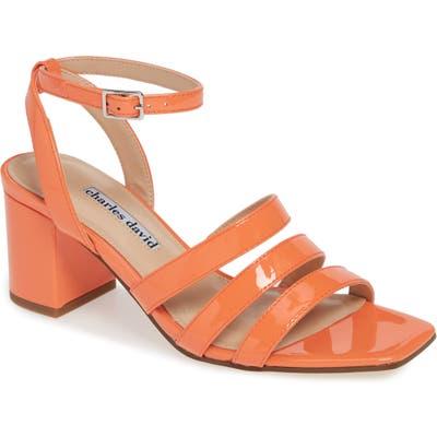 Charles David Crispin Ankle Strap Sandal