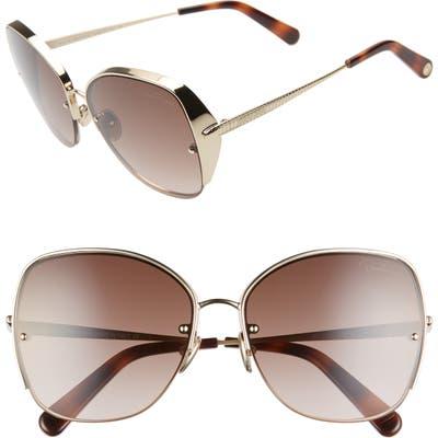 Roberto Cavalli 60Mm Sunglasses - Gold/ Brown Mirror