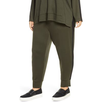Plus Size Eileen Fisher Track Pants