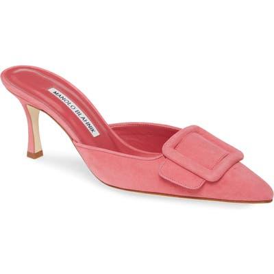 Manolo Blahnik Maysalebi Buckle Pointed Toe Mule, Pink