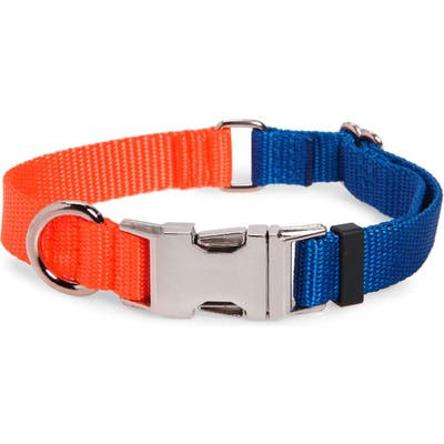Ware Of The Dog Two-Tone Nylon Dog Collar, Blue