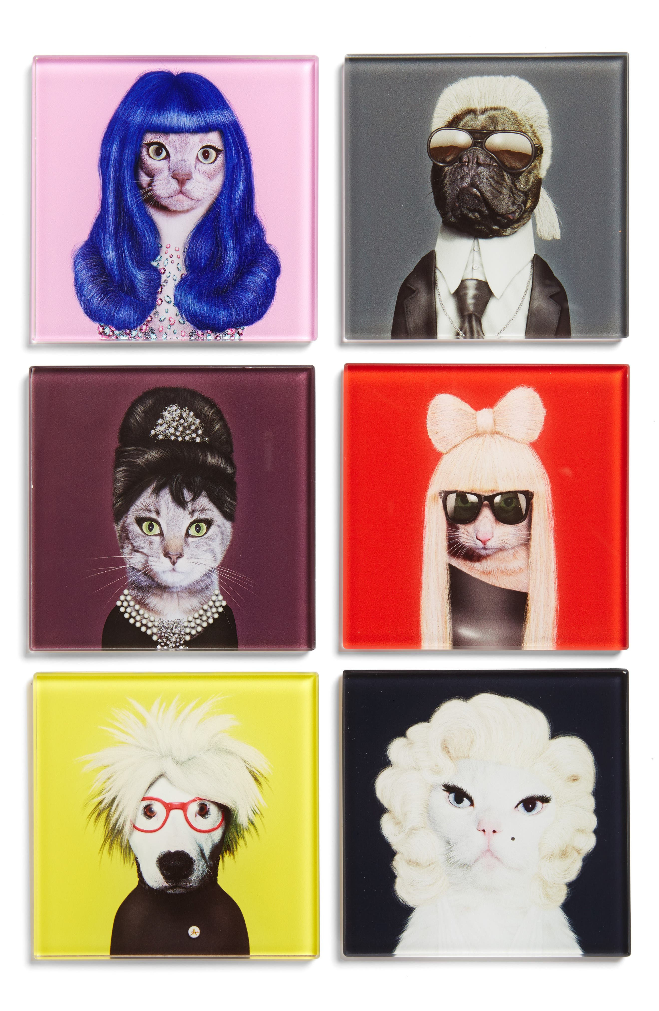 ,                             Pets Rock Set of 6 Coasters,                             Main thumbnail 1, color,                             400
