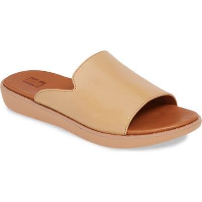 Fitflop Saffi Slide Sandal, Brown