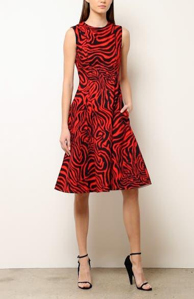 Zebra Print Denim A-Line Dress, video thumbnail