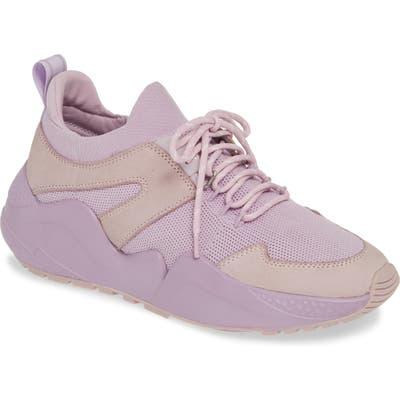 Kenneth Cole New York Maddox Sneaker, Purple