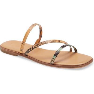 Madewell The Lyra Slide Sandal- Brown