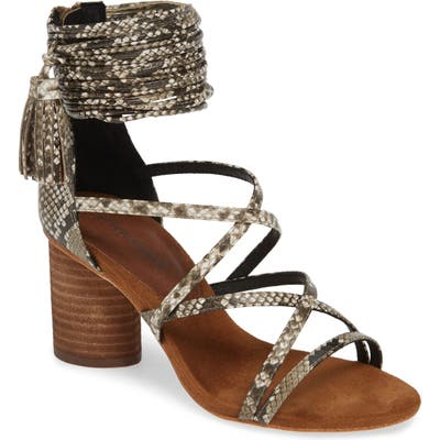 401b4ad78e8 Women's Jeffrey Campbell Sandals