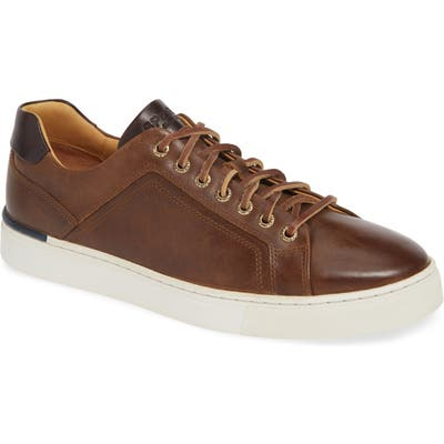 Sperry Gold Cup Victura Ltt Sneaker, Brown