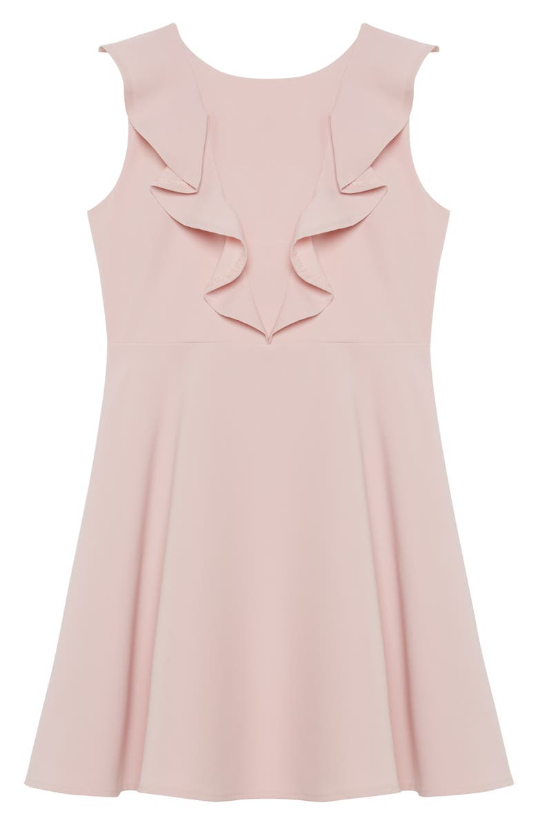 BARDOT JUNIOR Bardot Riley Sleeveless Ruffle Dress, Main, color, POTPOURRI