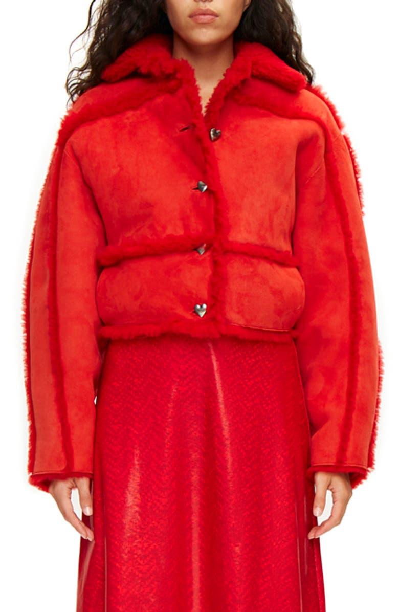 SAKS POTTS Kahlo Genuine Shearling Crop Jacket, Main, color, 600