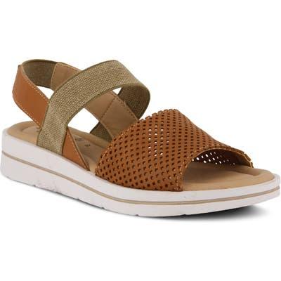 Spring Step Travel Sandal, Brown