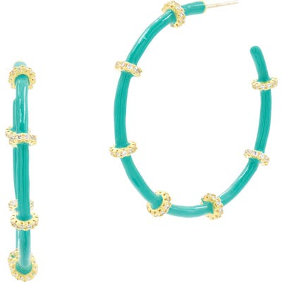 Freida Rothman Harmony Enamel Hoop Earrings