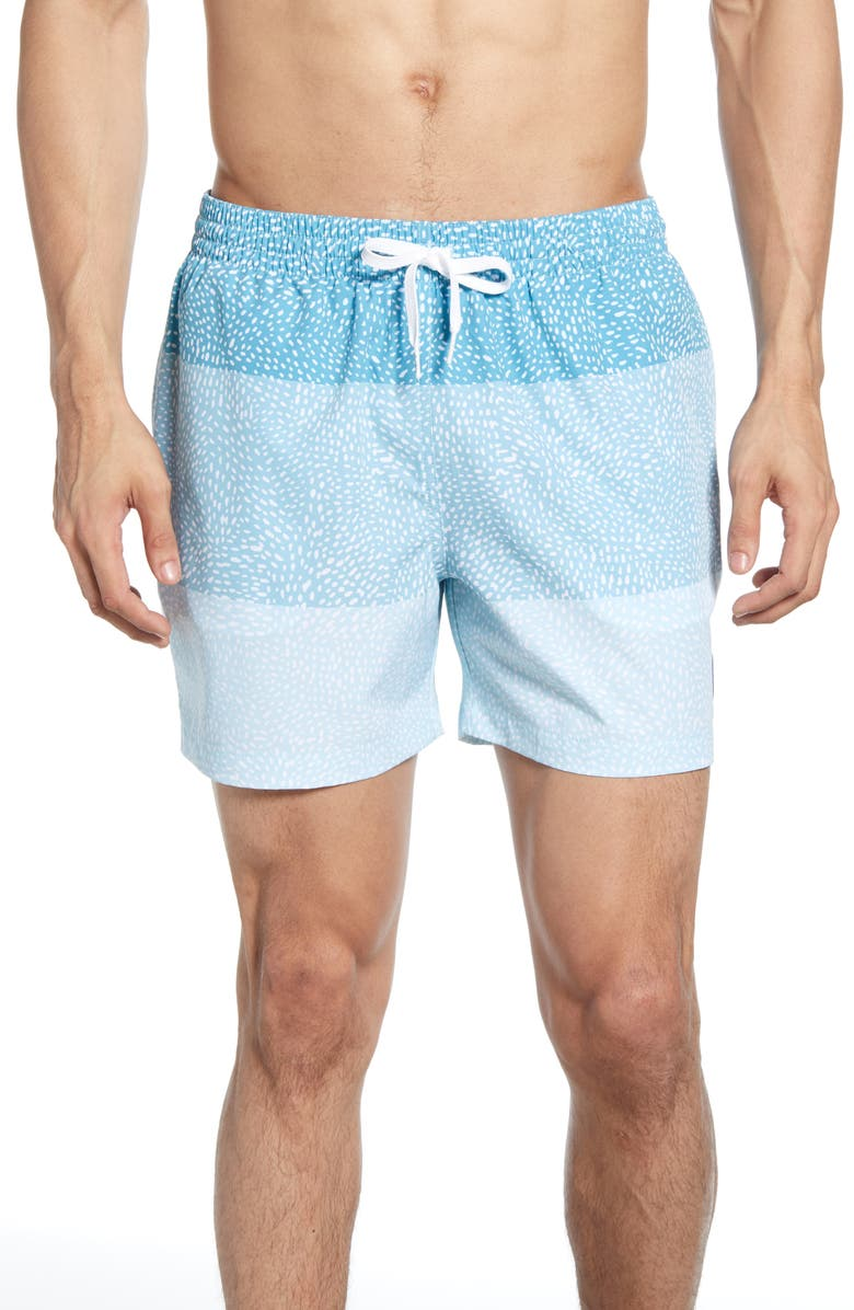 0a4fefab87 Whale Sharks Print Swim Trunks, Main, color, LIGHT BLUE STRIPE