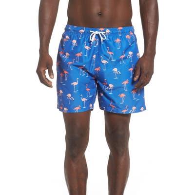 Trunks Surf & Swim Co. Flamingo Swim Trunks, Blue