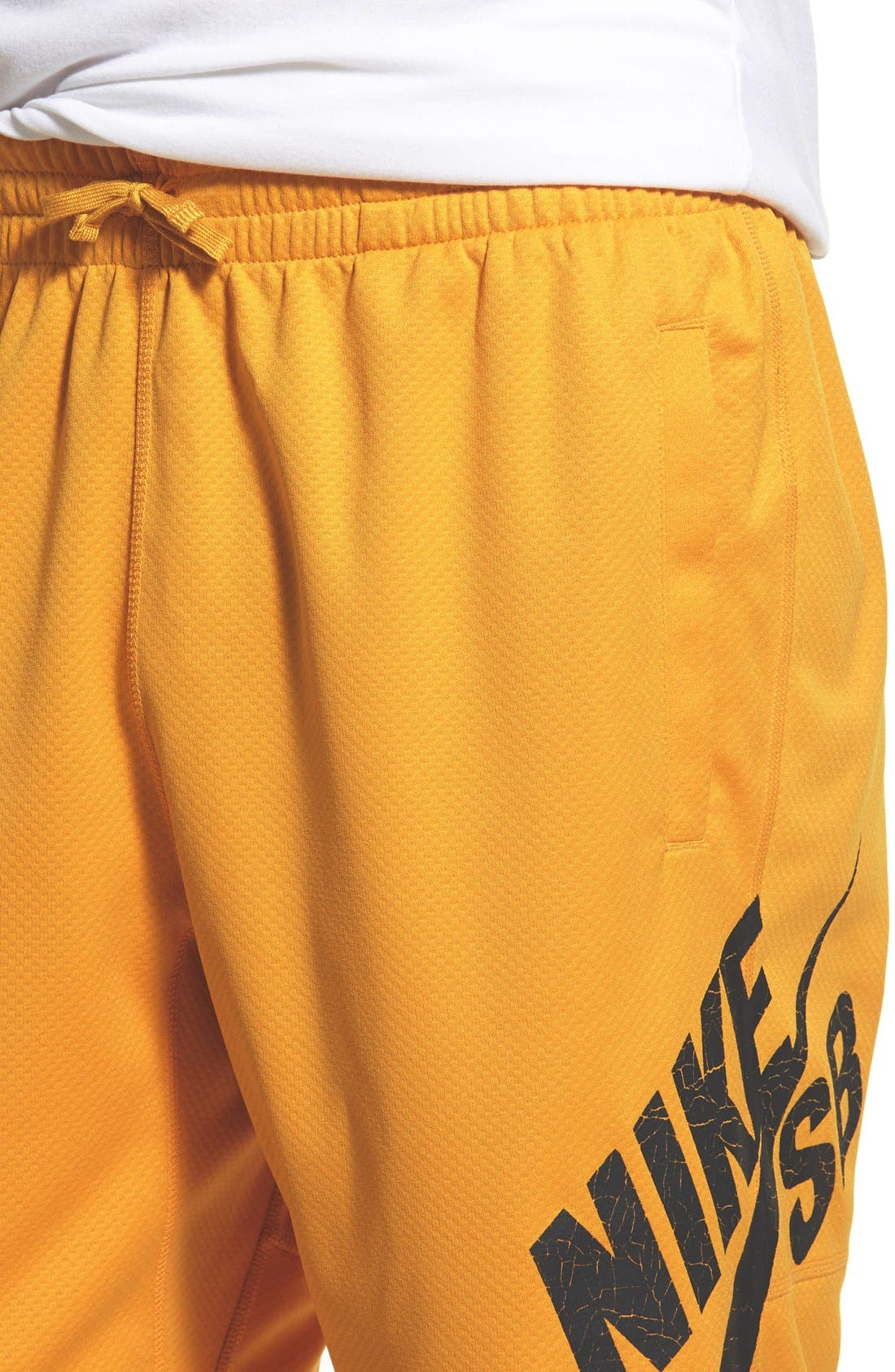 ,                             SB 'Sunday' Dri-FIT Shorts,                             Alternate thumbnail 23, color,                             713