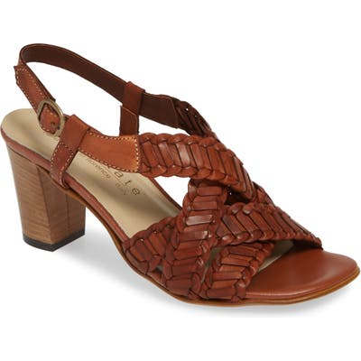 David Tate Amarone Sandal, Brown