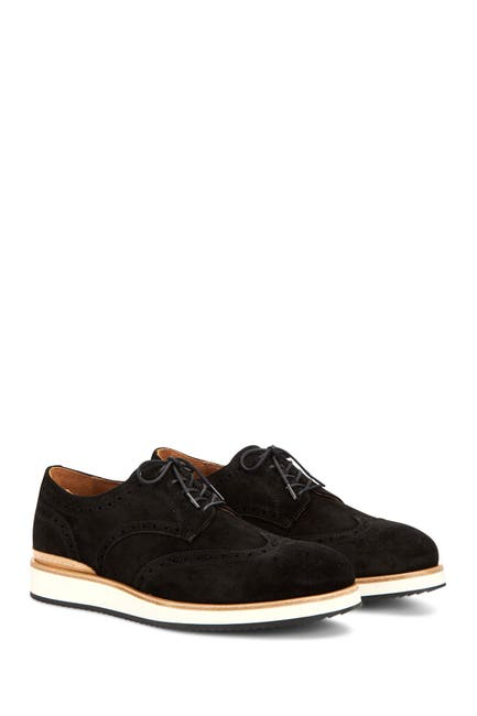 Image of Aquatalia Vander Suede Wingtip Derby