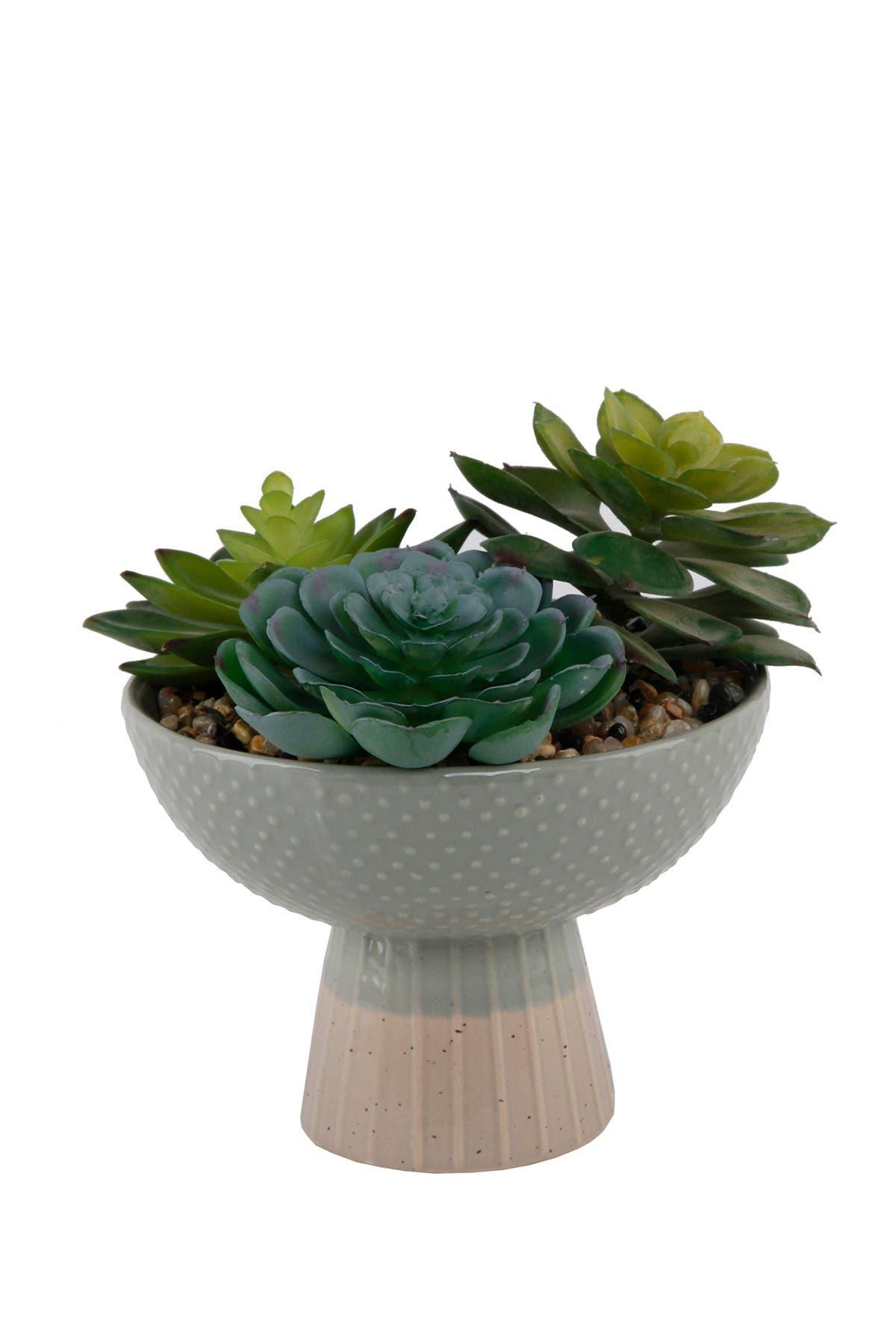 Image of FLORA BUNDA Grey/Beige Succulent Mix Ceramic Planter