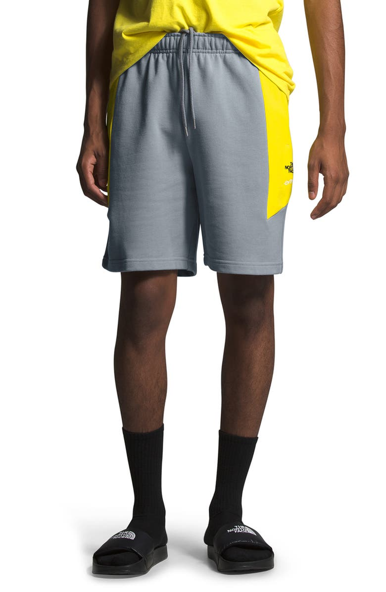 THE NORTH FACE '90 Extreme Colorblock Shorts, Main, color, 030