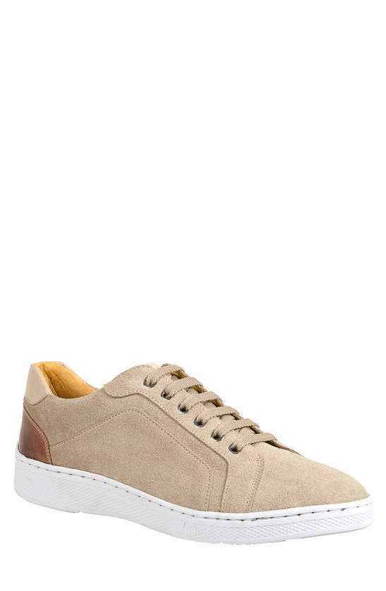 Sandro Moscoloni Trendy Lace-up Sneaker In Taupe
