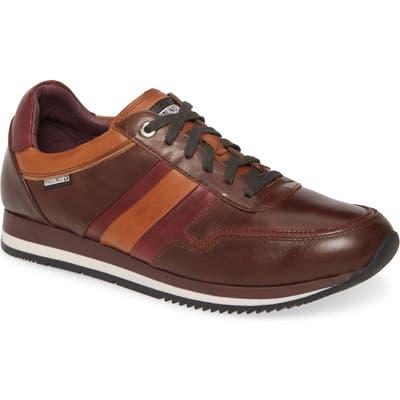 Pikolinos Palermo Sneaker - Brown