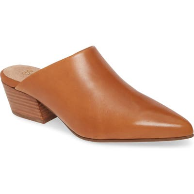 Seychelles Rendezvous Pointed Toe Mule, Brown