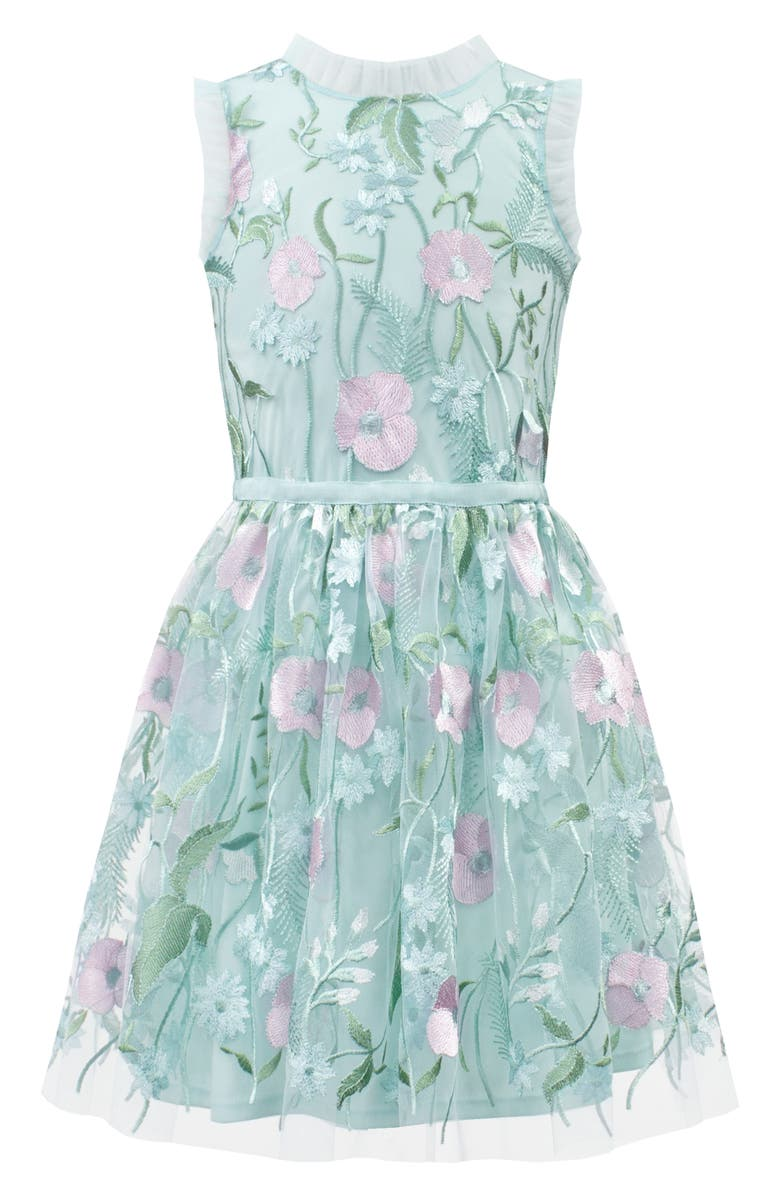 DAVID CHARLES Pastel Embroidered Tulle Dress, Main, color, 400