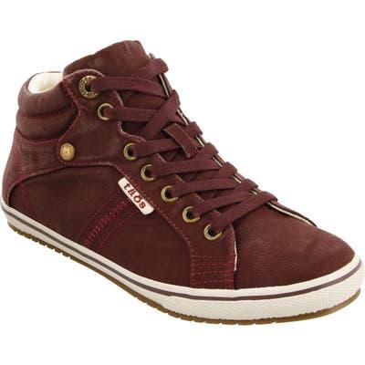Taos Top Star Sneaker