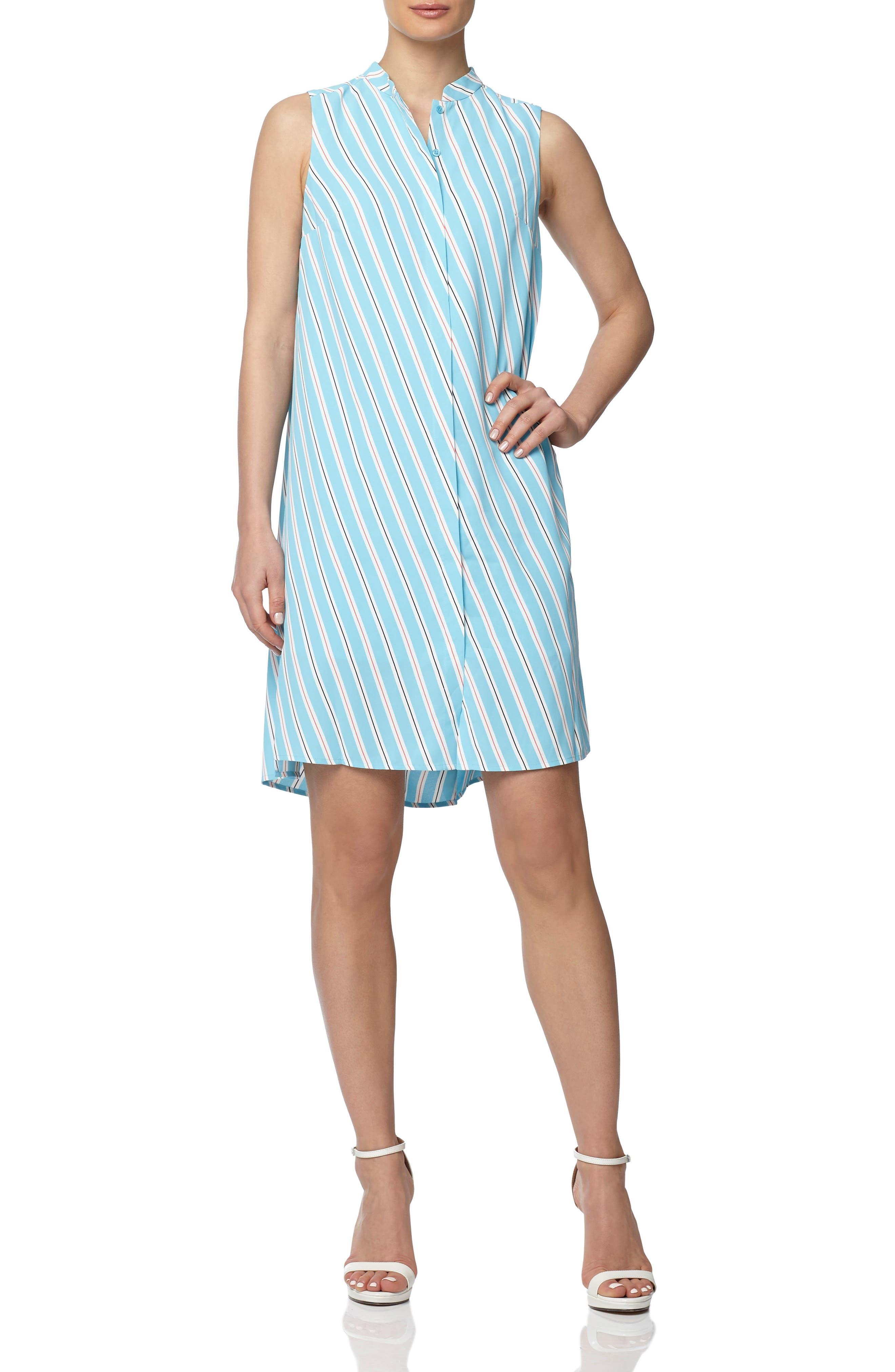 Bias Stripe Sleeveless Trapeze Dress