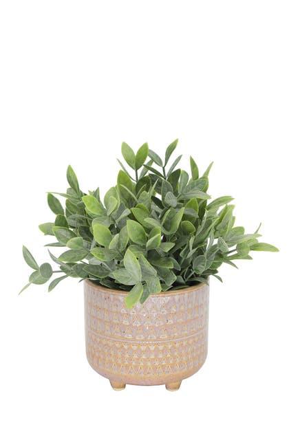 "Image of FLORA BUNDA Tea Leaf in 5"" Mauve Pharaoh Footed Pot"