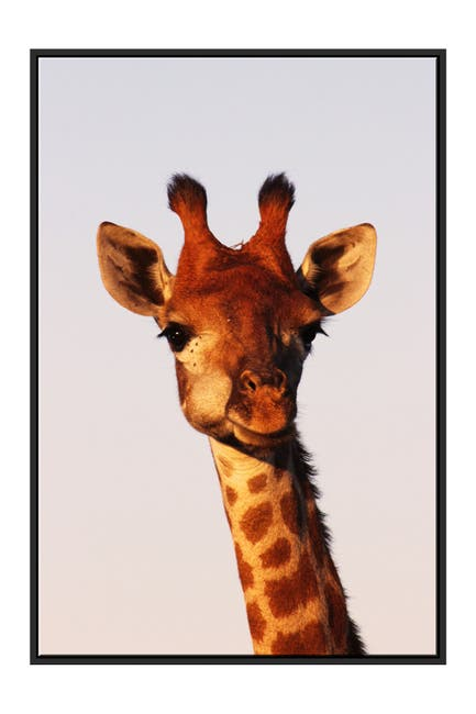 Image of PTM Images Giraffe Canvas with Floater Frame