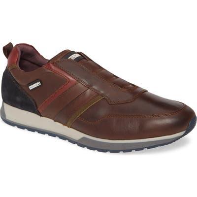 Pikolinos Cambil Sneaker