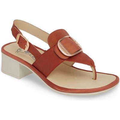 Fly London Emat Thong Sandal, Orange