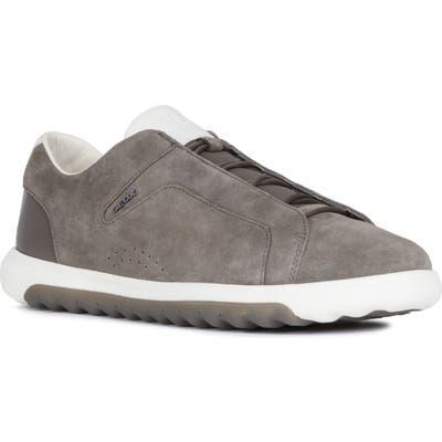 Geox Nexside 1 Sneaker, Grey
