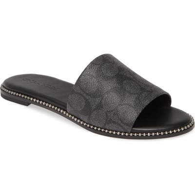 Coach Harper Slide Sandal, Grey
