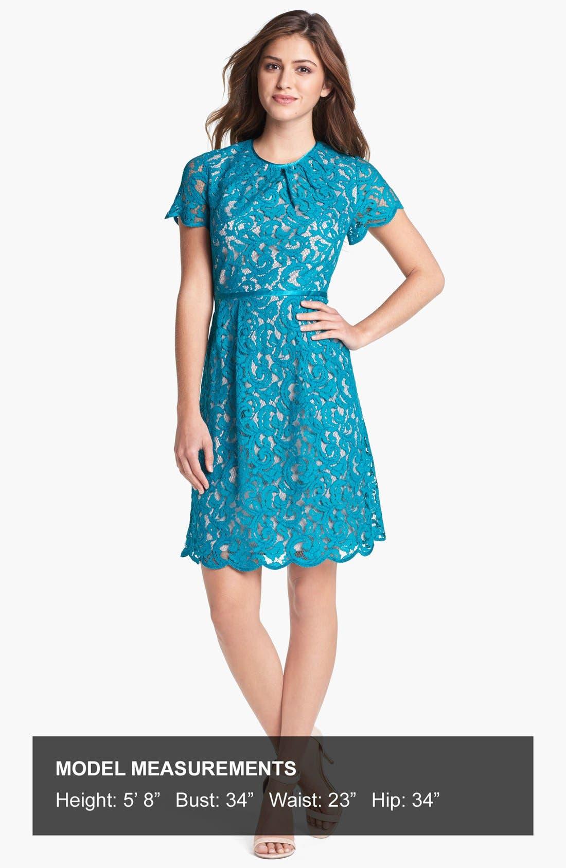 ,                             Scalloped Lace Dress,                             Alternate thumbnail 7, color,                             444