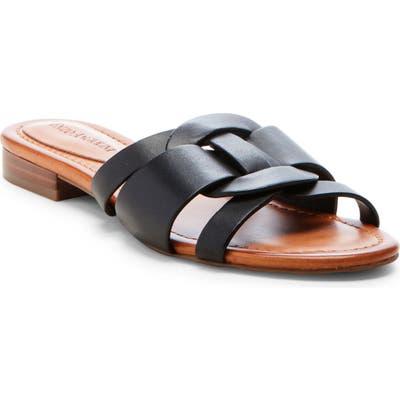 Enzo Angiolini Golda Slide Sandal- Black