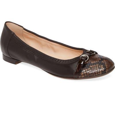 Agl Cap Toe Ballet Flat - Brown